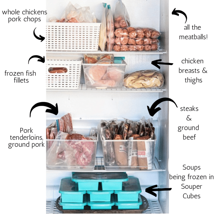 labelled bins in freezer