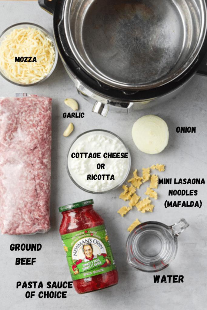 lazy lasagna ingredients flatlay