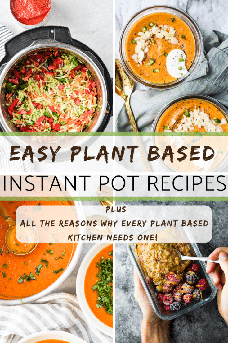 easy plant based instant pot recipes